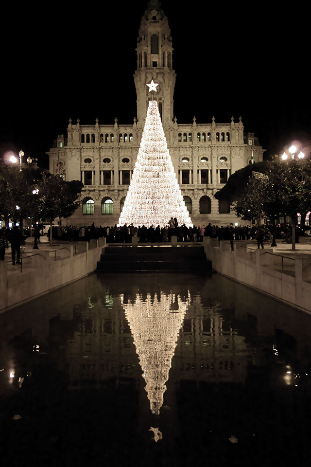 Árvore de Natal - Avenida dos  Aliados - Porto