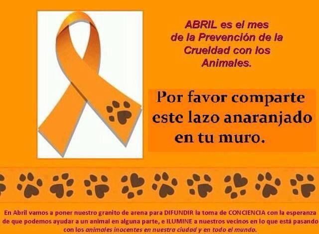 Resultado de imagem para prevenção animal